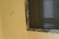 fotos marmorite acacio josé (35)